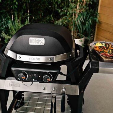 Barbecue Griglia Elettrica