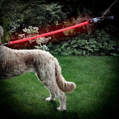 Guinzaglio Led Spada Laser