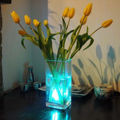 Luce Led Per Vasi Di Fiori