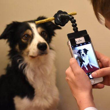 Selfie Stick Per Cani Con Gancio Biscotto