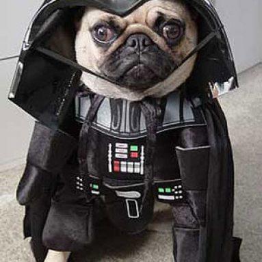 Costume Per Cane Darth Vader