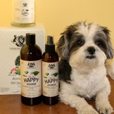 Aromaterapia Anti Stress Per Cani