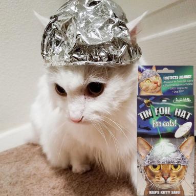 Cappello di Alluminio Per Gatti Paranoici