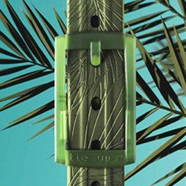 Cintura In Gomma Nichel-Free