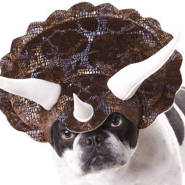 Costume Per Cane Da Triceratopo