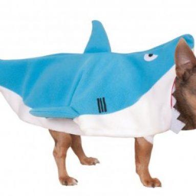 Costume Squalo Per Cani