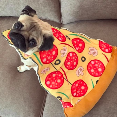 Costume Pizza Per Cane