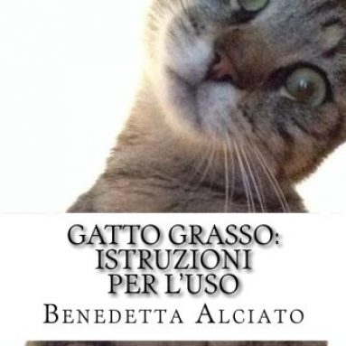 Gatto Grasso: Istruzioni Per L'Uso