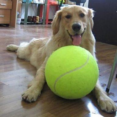 Pallina Da Tennis Gigante